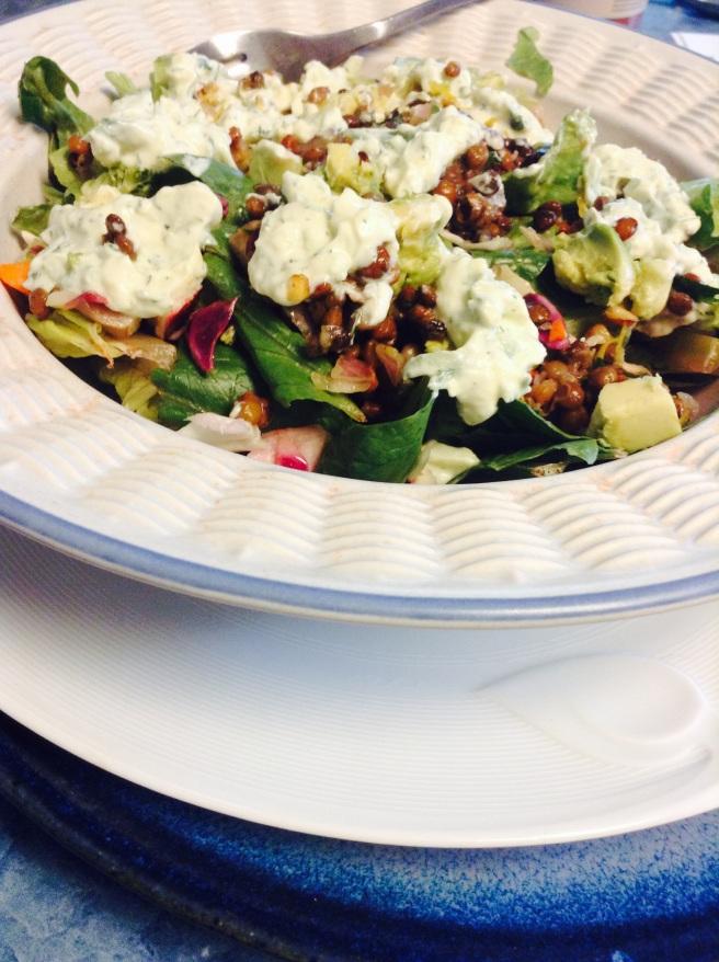 Lentil Avocado Tzatziki Salad