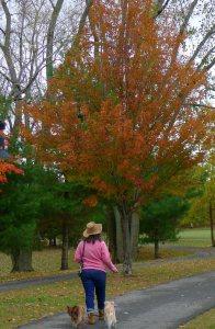Walking at the park