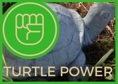 bturtlepower