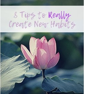 bnewhabits