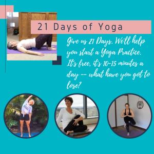 21 Days of Yoga Social Media