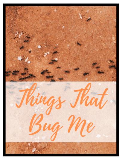 bbugs
